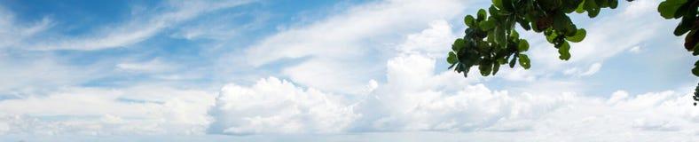 Panorama tropical del cielo de la mañana imagen de archivo libre de regalías