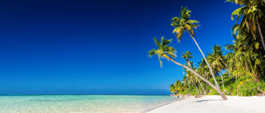 Panorama of tropical island with coconut palm trees on sandy bea Royalty Free Stock Photography