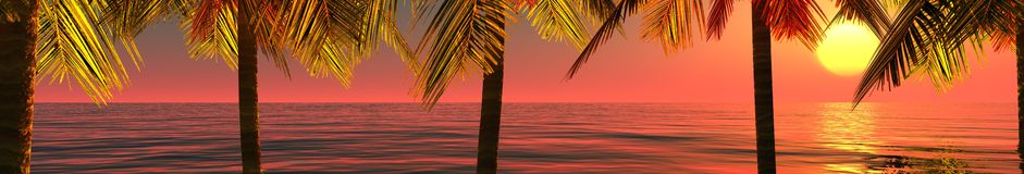 Panorama tropical, la puesta del sol y palmeras Imagen de archivo