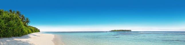 Panorama tropikalna wyspa z kokosowymi drzewkami palmowymi Obrazy Royalty Free