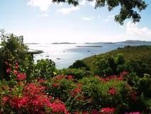 Panorama- tropiskt Arkivbilder
