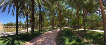Panorama from the Turia garden Stock Photos