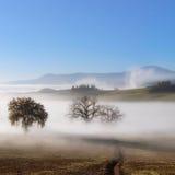 Panorama of Tuscanian farmland landscape Stock Images