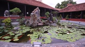 Panorama Up on Decorative Pond with Water-lilies. In vietnamese yard stock footage
