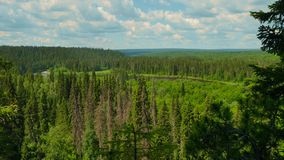 Panorama ural mountains. Panorama from top hill to ural mountains stock footage