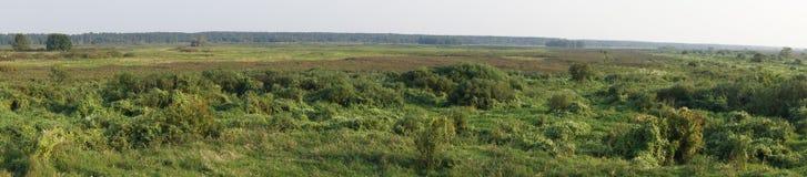 Panorama- utsikt på våtmarkerna av den Biebrza nationalparken, Polen royaltyfri foto