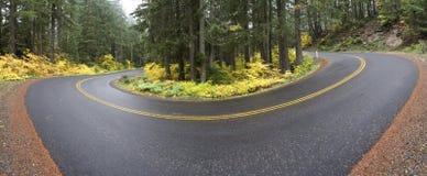 panorama- väg för kurva Royaltyfri Fotografi