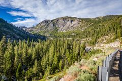 Valley full of pine trees and a guard rail on the right corner close to Lake Tahoe. Panorama of a valley full of pine trees and a guard rail on the right corner royalty free stock photography