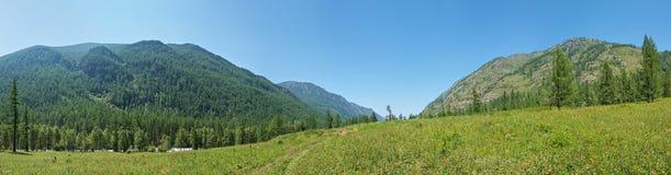 Panorama of the valley Kucherla. Trekking in the Altai Mountains Stock Image