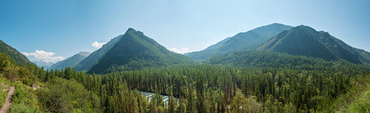 Panorama of the valley of the river Kucherla. Trekking in the Altai Mountains Royalty Free Stock Photo