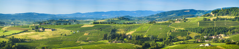 Panorama van Beaujolaisland, Frankrijk Stock Foto's
