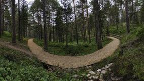 Panorama van berg lopende weg Stock Afbeelding