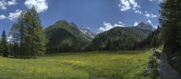 De weg van de berg, Valmalenco - Italië Royalty-vrije Stock Foto