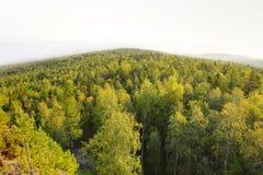 Panorama van bergbos Royalty-vrije Stock Fotografie