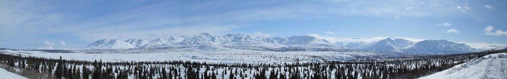 Panorama van bergen Chugach Stock Foto