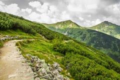 Panorama van bergpieken van de sleep Royalty-vrije Stock Fotografie