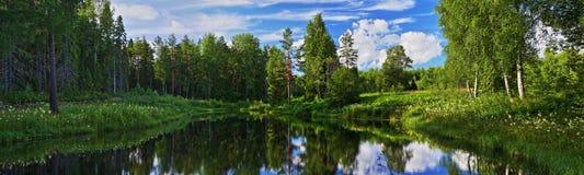 Panorama van bosmeer Stock Foto's