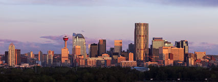 Panorama van Calgary bij zonsopgang Royalty-vrije Stock Foto