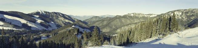 Panorama van Chopok-berg bij Jasna-toevluchtgebied, Slowakije Stock Foto