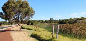 Panorama van cycleway rond Groot van het West- moeras parkland Bunbury Australië. royalty-vrije stock afbeelding