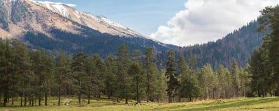 Panorama van de bergen Royalty-vrije Stock Foto's