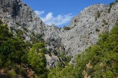 Panorama van de bergen, met bomen, tegen de achtergrond van de de zomer blauwe hemel in Goynuk-canion wordt overwoekerd die stock afbeelding
