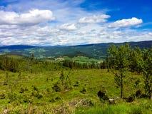 Panorama van de bergen van Valdres, Noorwegen met zonneschijn op summerday royalty-vrije stock foto