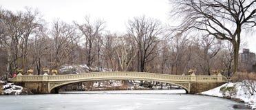 Panorama van de Brug van de Central Park` s Boog in de winter Royalty-vrije Stock Fotografie