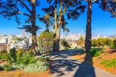 Panorama van de de dames Victoriaanse Huizen van San Francisco Painted royalty-vrije stock foto