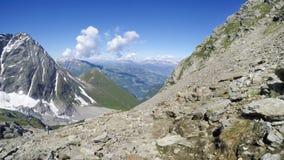 Panorama van de Geitdieren van de Gemzenberg op rots van Mont Blanc-massief royalty-vrije stock fotografie