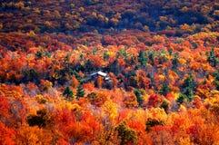 Panorama van de herfstberg stock foto