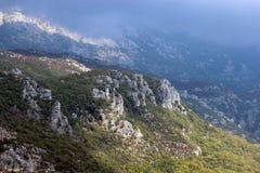 Panorama van de hoge groene bergen in Montenegro Stock Foto's