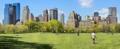 Panorama van de horizon van Manhattan uit Centraal park op zonnige dag wordt genomen die royalty-vrije stock foto