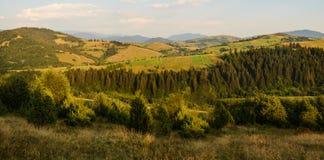Panorama van de Karpatische Bergen in de avond stock foto's