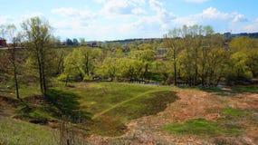 Panorama van de stad en de bomen Stock Fotografie