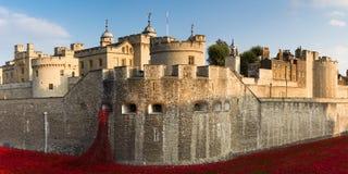 Panorama van de Toren van Londen Stock Fotografie