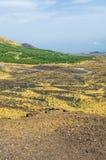 Panorama van de vallei van Etna, waar de weg die tot de centrale krater leiden stroomt royalty-vrije stock afbeeldingen