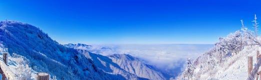 Panorama van de winter, Deogyusan Royalty-vrije Stock Afbeelding