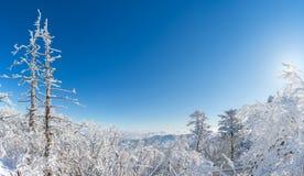 Panorama van de winter, Deogyusan Stock Foto's
