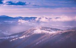 Panorama van de winterbergen bij zonsopgang Landschap met mistige die heuvels en bomen met rijp worden behandeld Royalty-vrije Stock Afbeeldingen