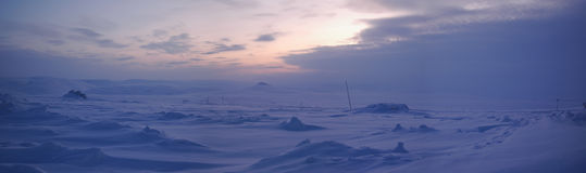 Panorama van de wintertoendra (Noord-Siberië) Stock Fotografie