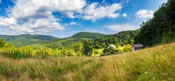Panorama van dorp en weide op helling dichtbij bergbos Stock Foto's