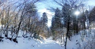 Panorama van een berg roud Stock Fotografie