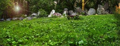 Panorama van een bosopen plek met granietkeien die op een rij liggen Stock Foto