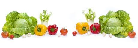 Panorama van een Groene kool Gele Peper Rode tomaten en komkommers op een witte achtergrond Royalty-vrije Stock Fotografie