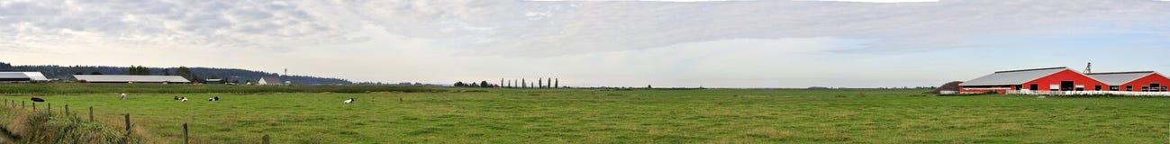 Panorama van een landbouwbedrijf Stock Afbeeldingen