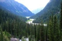 Panorama van een mooie bergvallei Royalty-vrije Stock Fotografie