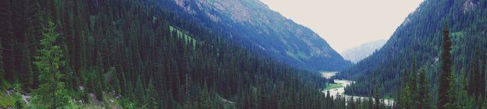 Panorama van een mooie bergvallei Royalty-vrije Stock Foto's