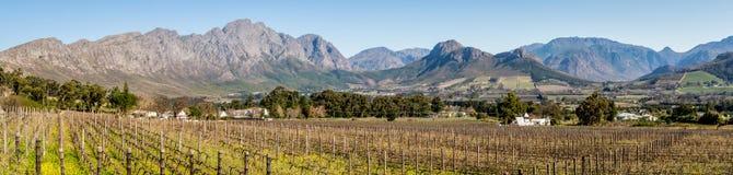 Panorama van Franschoek-vallei in de Westelijke Kaap stock foto's