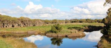 Panorama van Groot Moeras Bunbury Stock Foto's